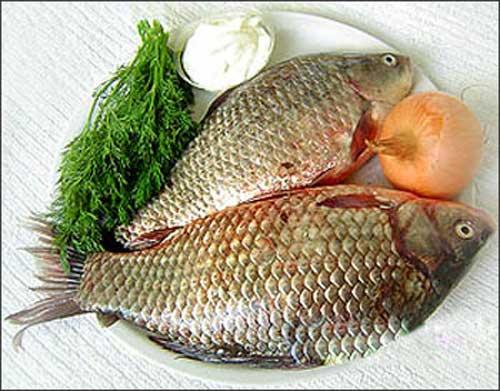 Cách chế biến món cá chép sốt xì dầu thơm ngon hấp dẫn mà bạn nên biết
