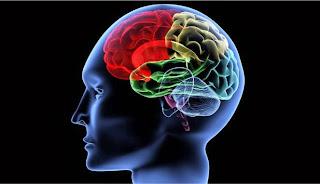Penyembuhan Kanker Otak