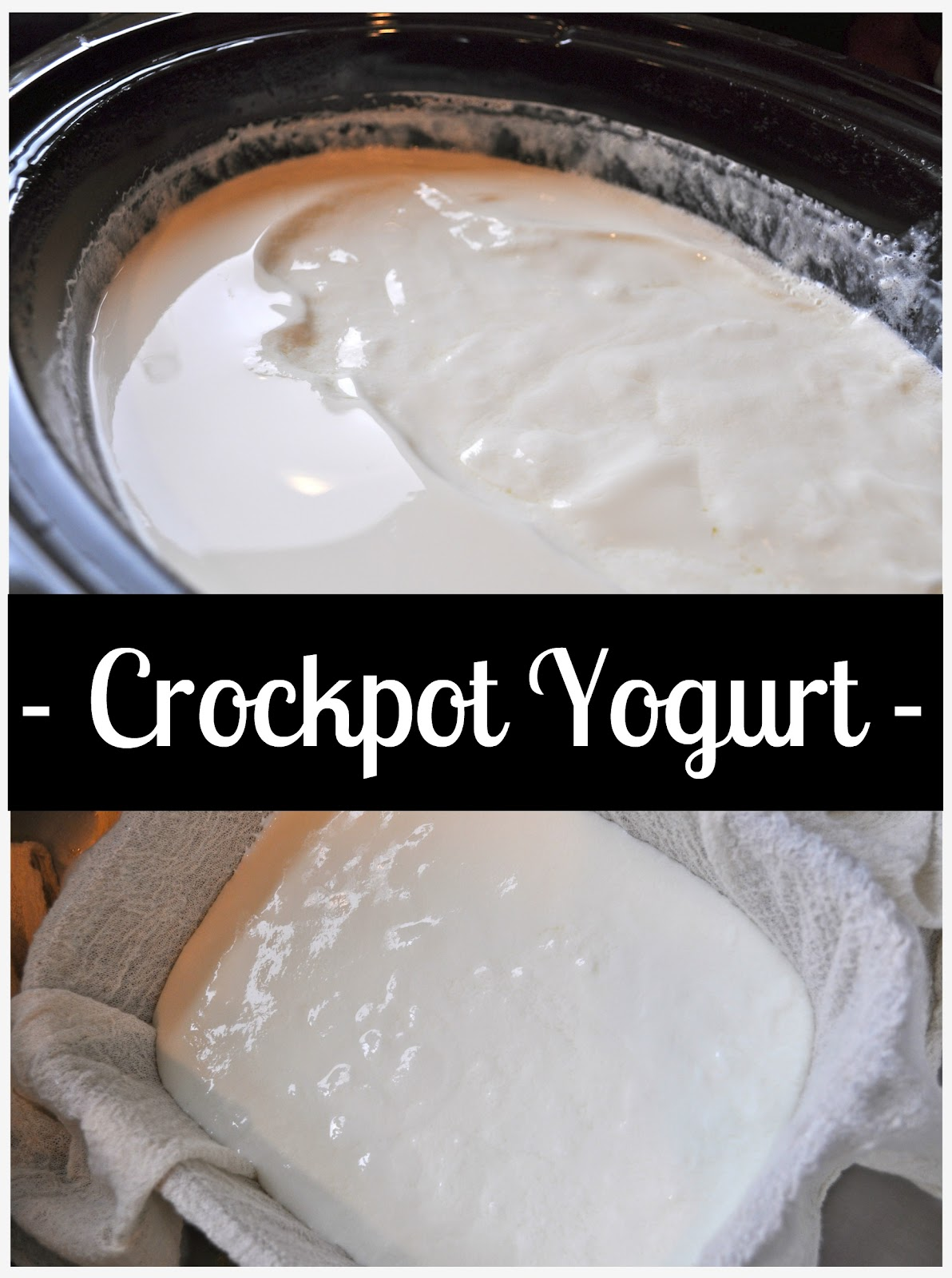 Crockpot Yogurt