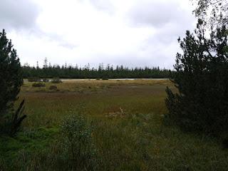 Hohlohsee