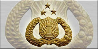 Panwaslu laporkan 2 pemilih ganda ke kepolisian