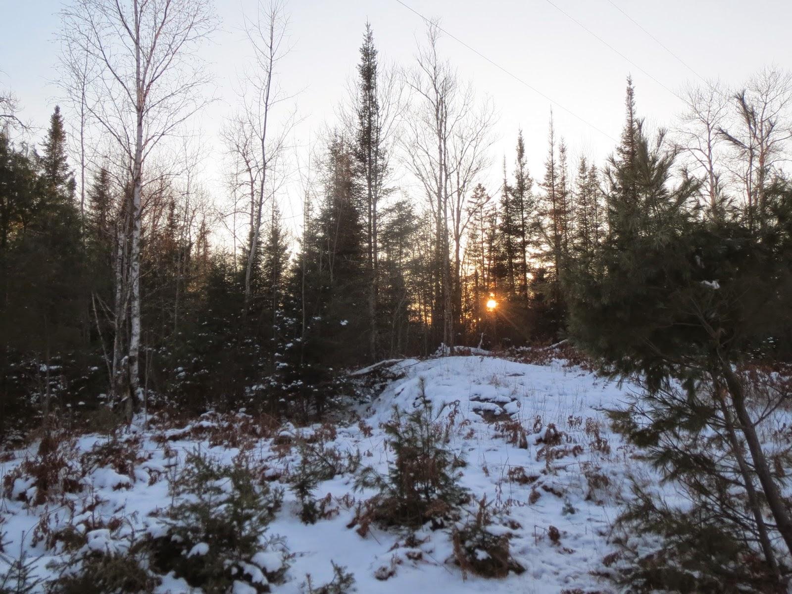 winter, ely, minnesota, snow, cold, sunset,