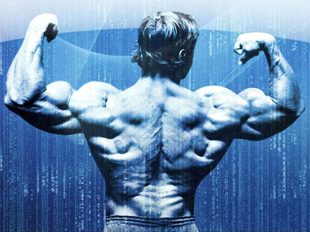Arnold Schwarzenegger Conquer Wallpaper Hd Free Download