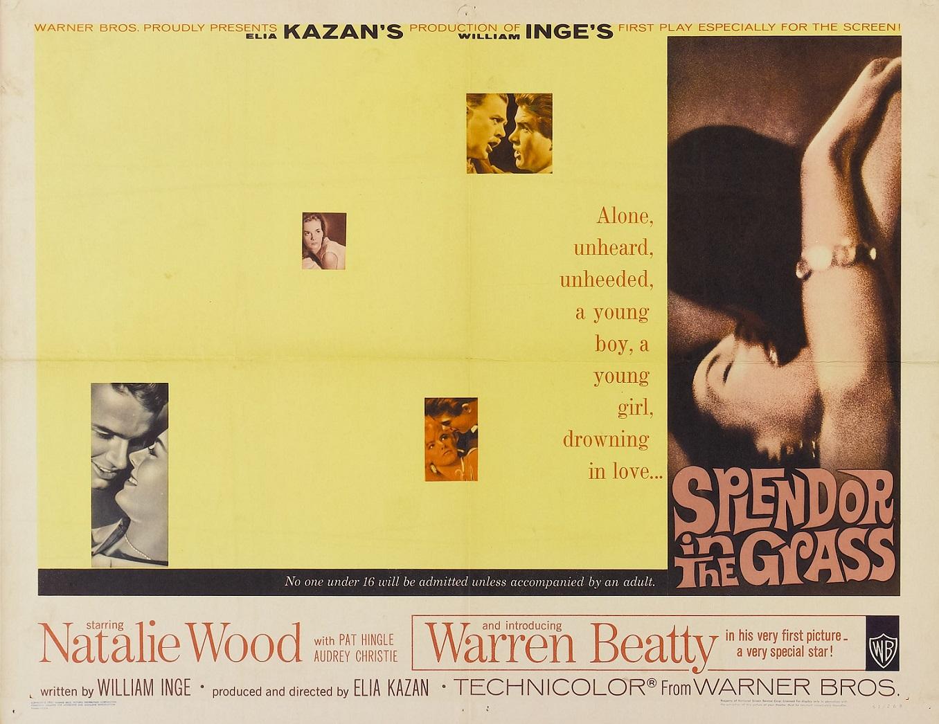 SPLENDOR IN THE GRASS (1961) WEB SITE