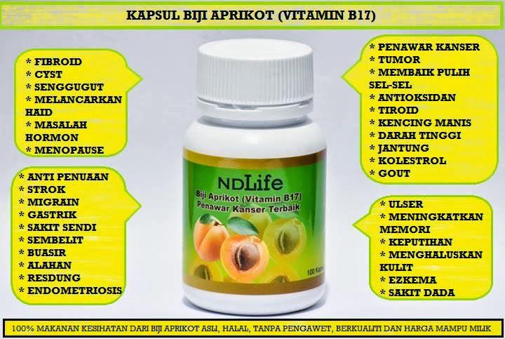 Herba & Kesihatan: Kapsul Biji Aprikot (Vitamin B17)