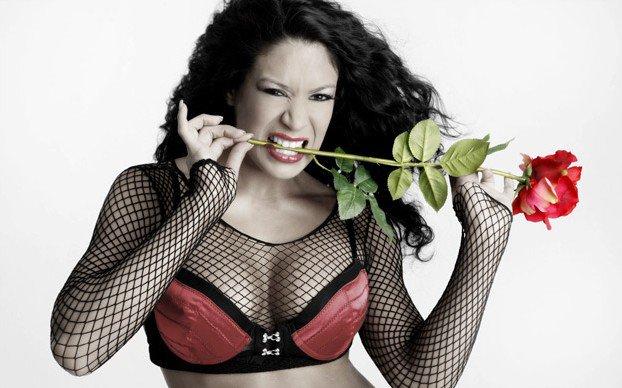 WWE Divas Valentine's Day