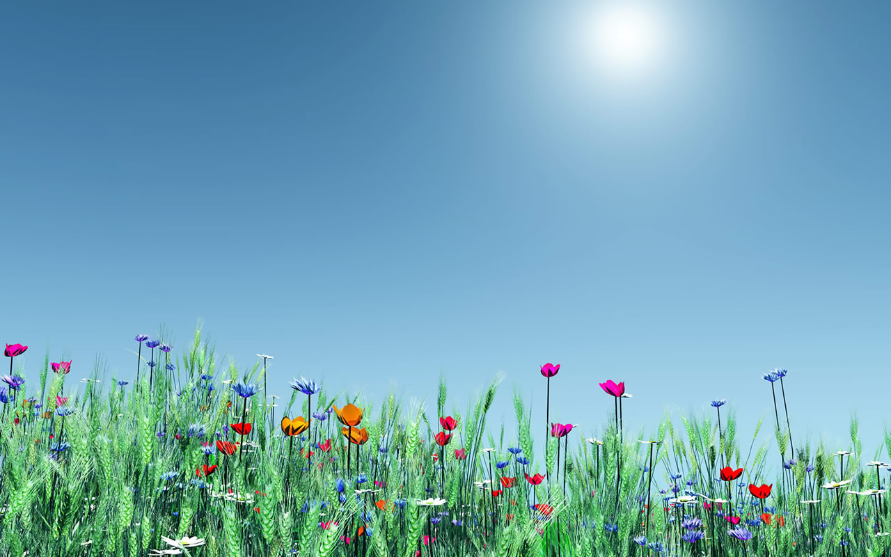 Spring hd wallpapers hd wallpapers - Backgrounds springtime ...