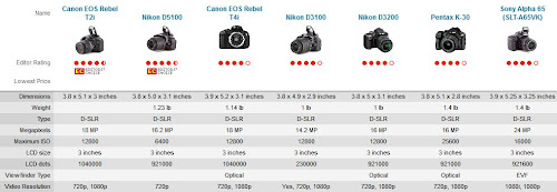 Top 7 Best Entry-Level DSLRs