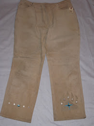 Suede Bear Paw Pants Front