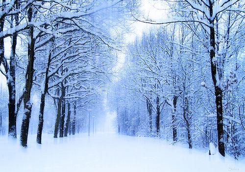 Δεκέμβριος, Χειμώνας Τοπίο