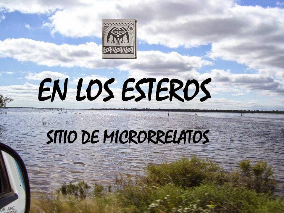 EN LOS ESTEROS (Página de microrrelato)