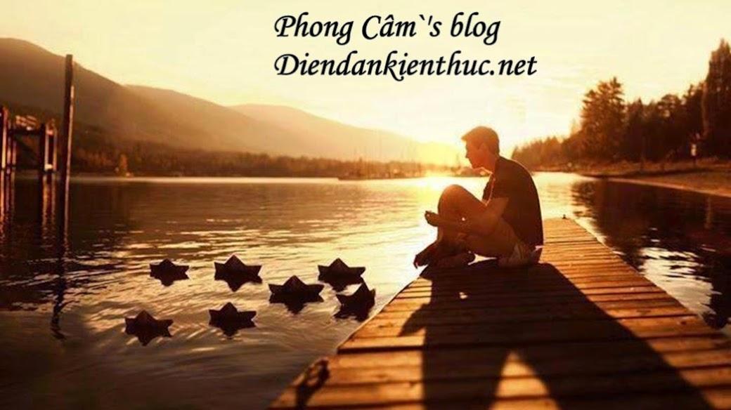 Phong Cầm