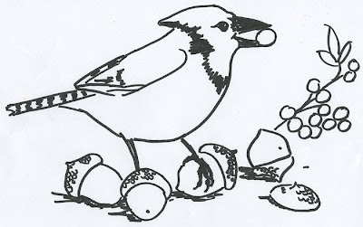 Coloring book page for a Blue Jay