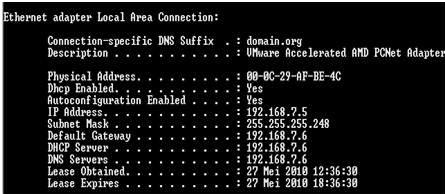 how to find dhcp server linux