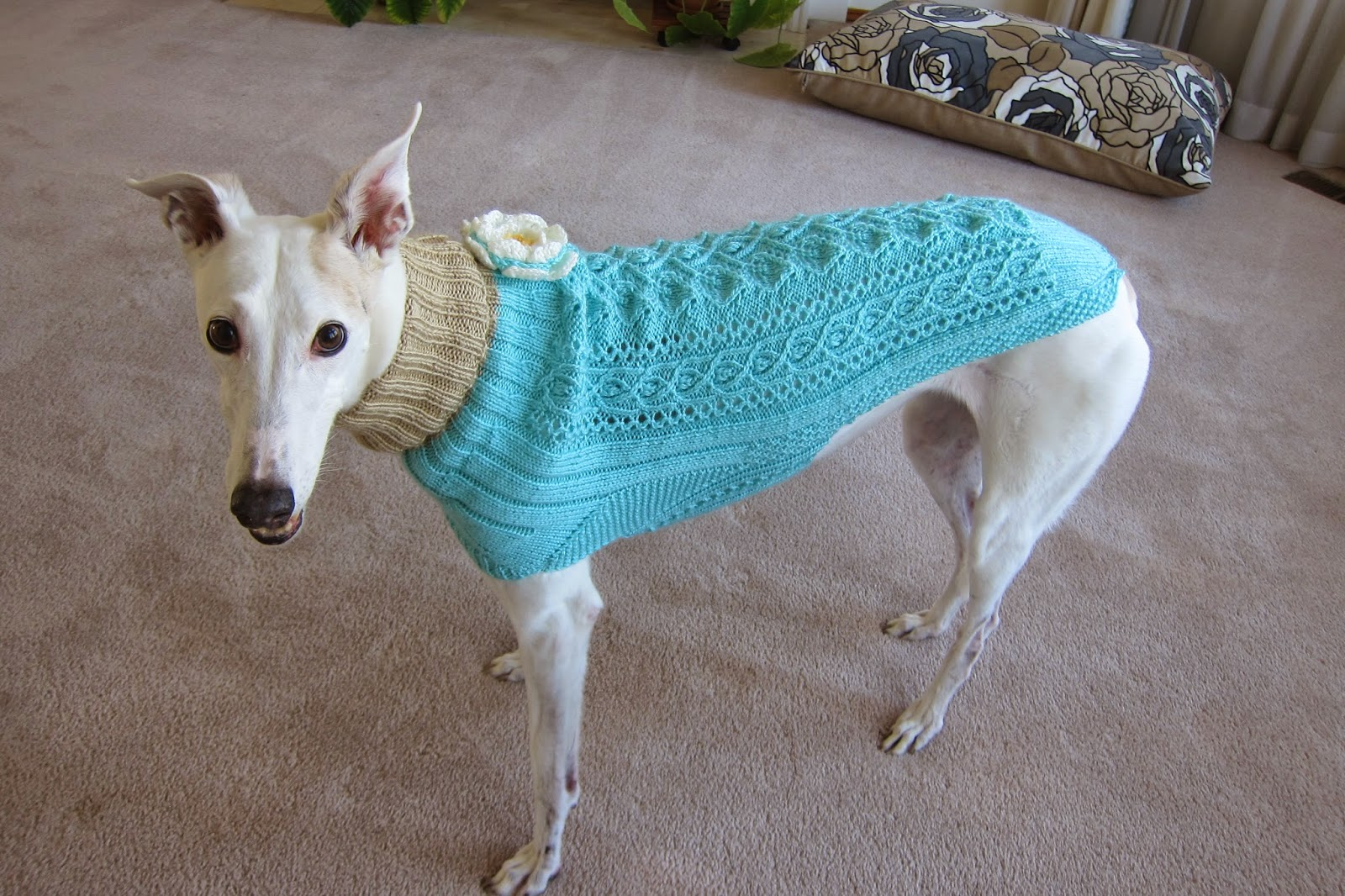 Knitting Patterns For Greyhound Sweaters : Knit Greyhound Sweater - Cashmere Sweater England