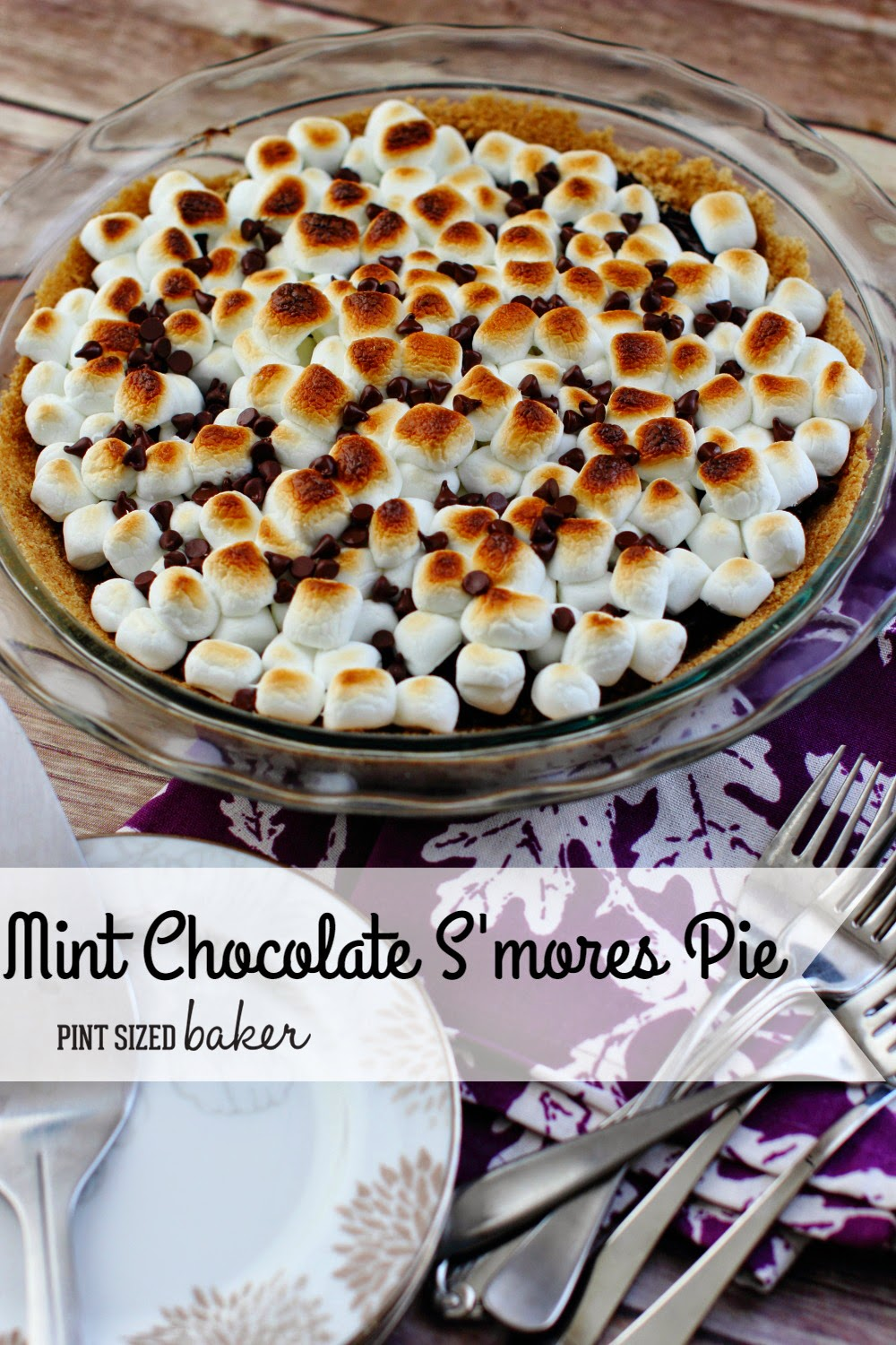 Be prepared to be indulged with this mint chocolate s'mores pie! All the great campfire flavors with a hint of mint and eaten with a fork.