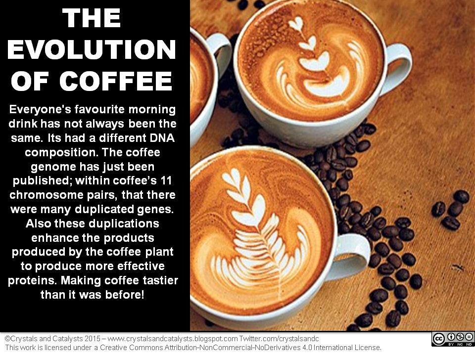 The Evolution of Coffee Infographic