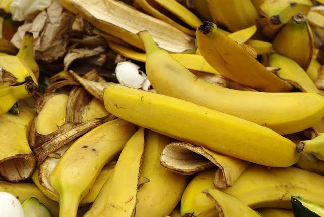 10 Manfaat Kulit Pisang yang harus anda Ketahui!. Kandungan kulit pisang. fungsi kulit pisang. pemanfaatan kulit pisang. kegunaan kulit pisang. manfaat makan pisang.