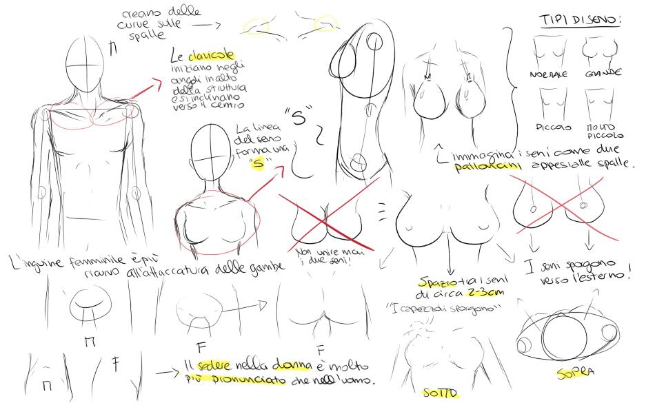 Molto TUTORIAL: Come disegnare il corpo in stile manga UF98