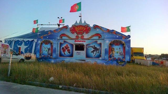 Circo Billy em Maiorca