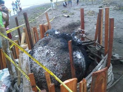 Ranjau Laut Peninggalan Sisa Perang di Temukan di Pantai Batang