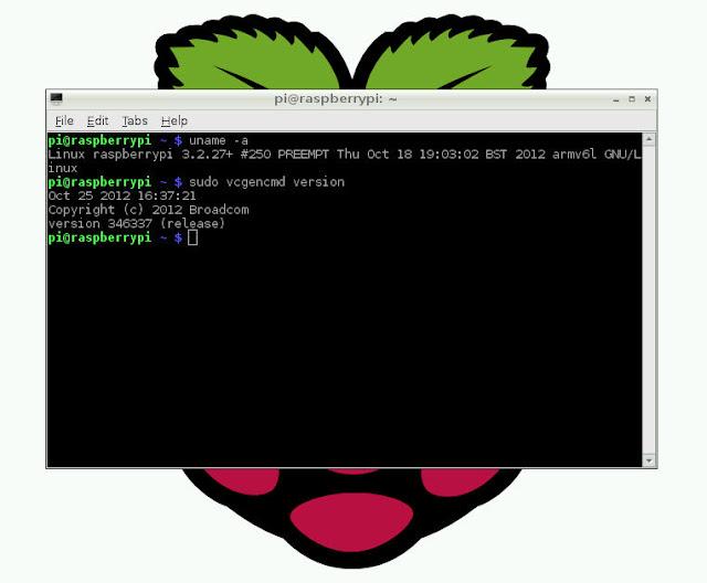 ntpdate raspberry Christiansø
