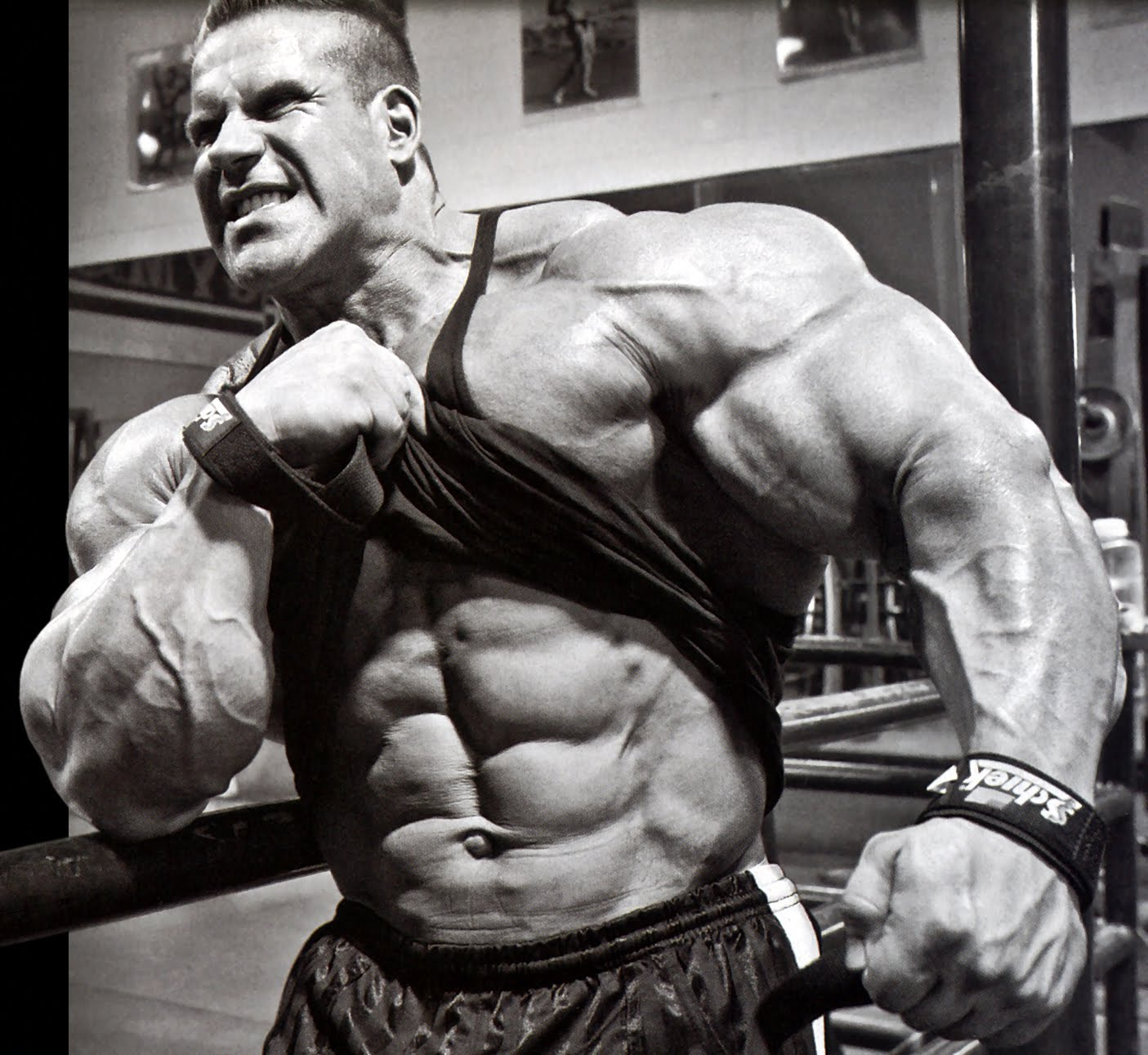 myostatin inhibitors steroids