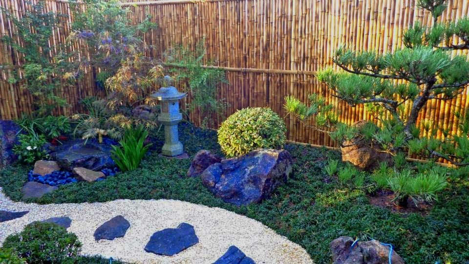 jardim; paisagismo; jardins;  pinheiro negro; kuromatsu; acer palmatum; momiji