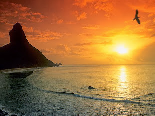 Deus fez tudo perfeito..'