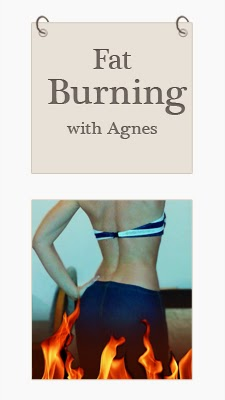 http://fasterbetternicer.blogspot.co.uk/2013/08/fat-burning-with-agnes.html