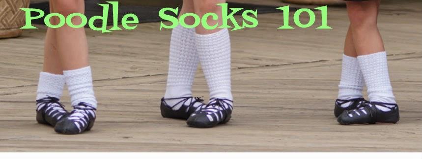 Poodle Socks 101