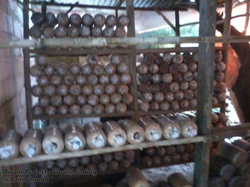 Rak Pembibitan Jamur Tiram, Rak Budidaya Jamur.