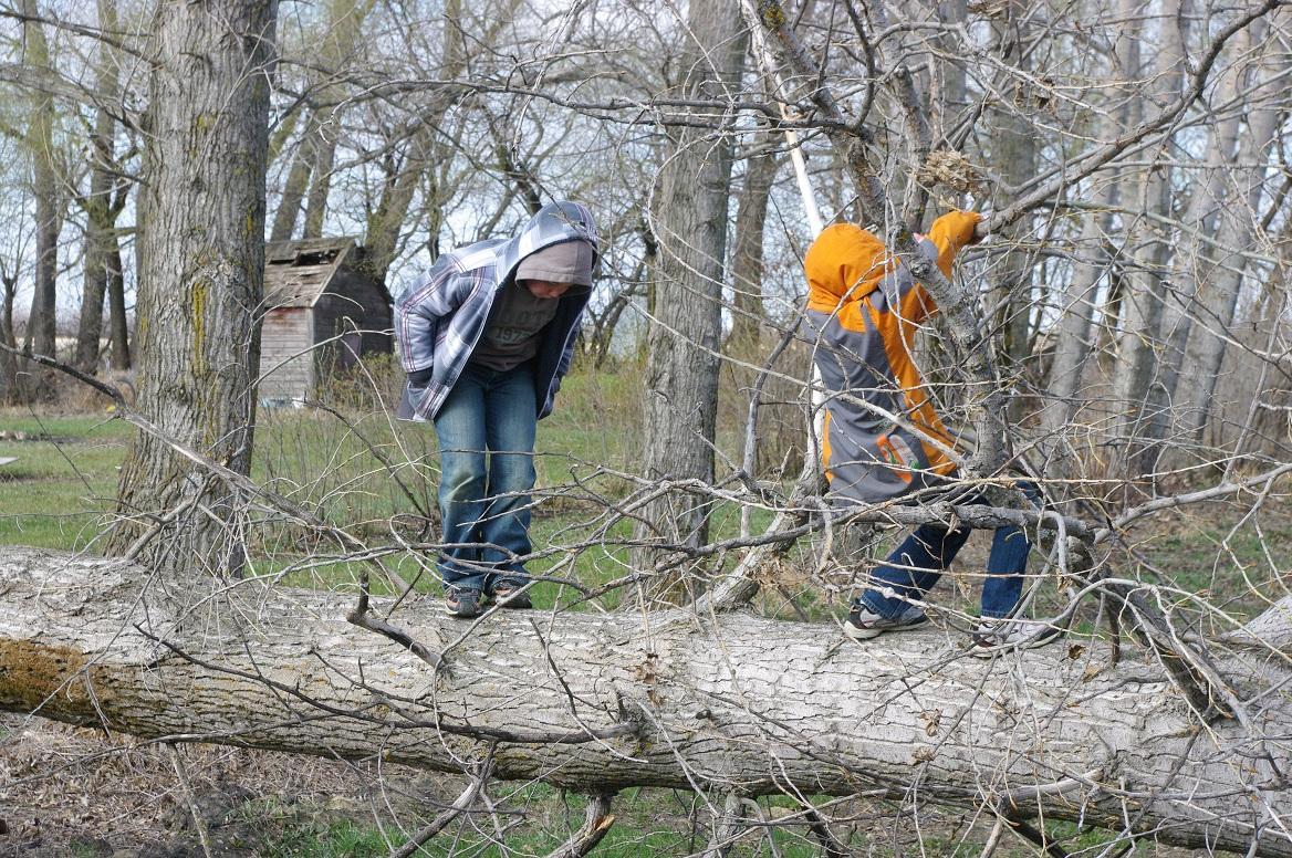 http://1.bp.blogspot.com/-g7GgI1SaIXY/T4xt--95oCI/AAAAAAAAByM/2Tt6yxHhwcY/s1600/boys+climbing+fallen+tree+%25232.jpg
