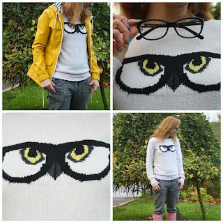 Fashion-ladies-Dorothy-Perkins-owl-jumper