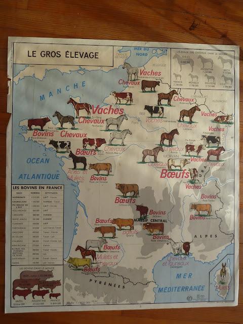 Ecole FMR 1000 Affiches scolaires: le gros élevage carte Mdi FRANCE 1960