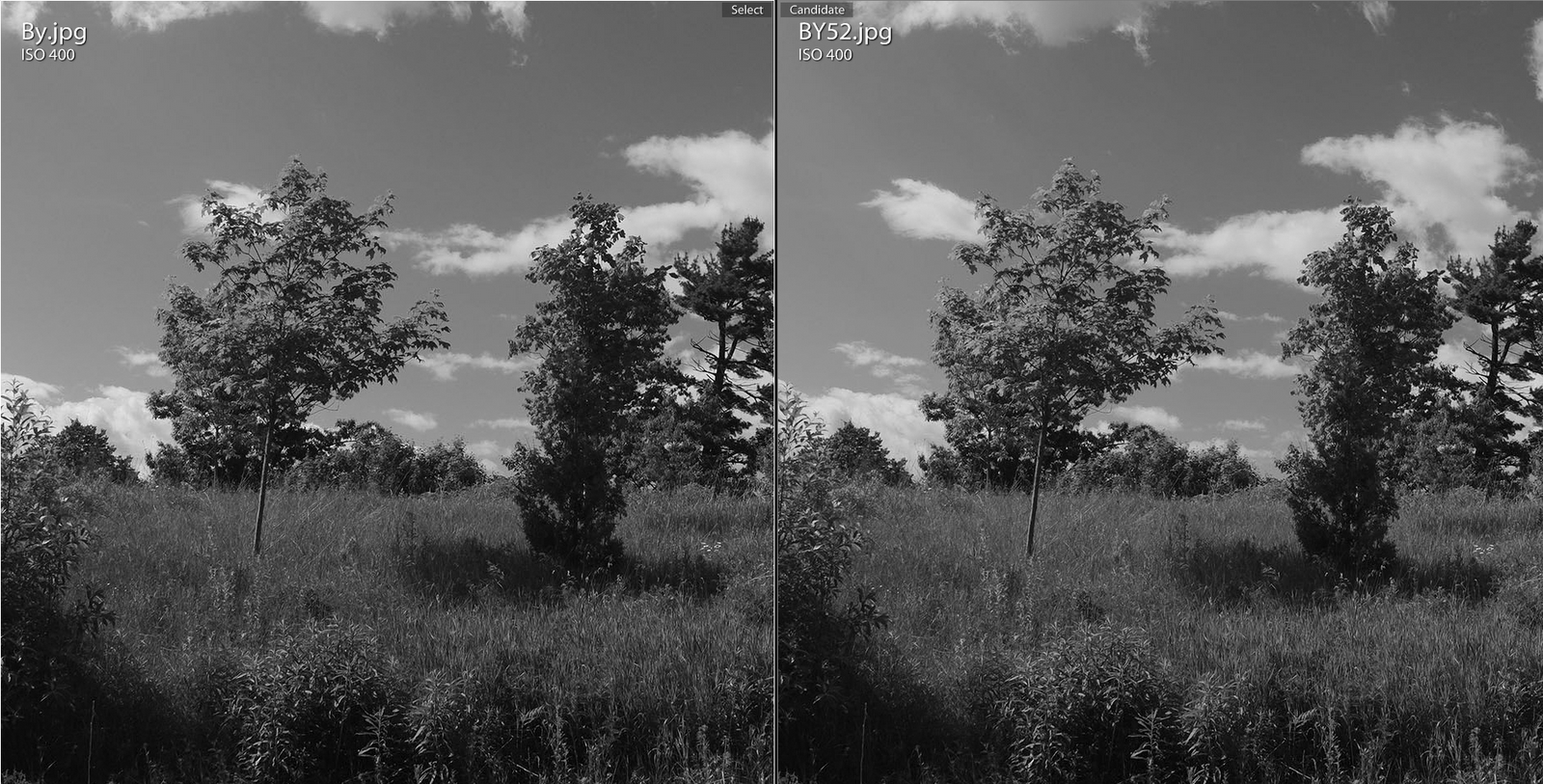 Yellow filters comparison