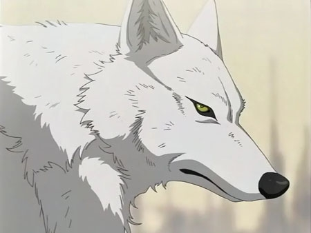 Ficha Finalizada 78863-wolves3-kiba-wolfs-rain