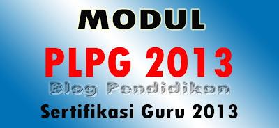 Modul PLPG 2013 Untuk Guru PKn