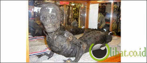 Mumi manusia setengah buaya di Marsh's Free Museum, AS