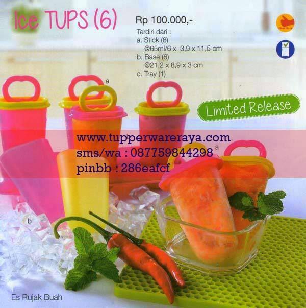 Katalog Tupperware Promo Januari 2015 Ice Tups