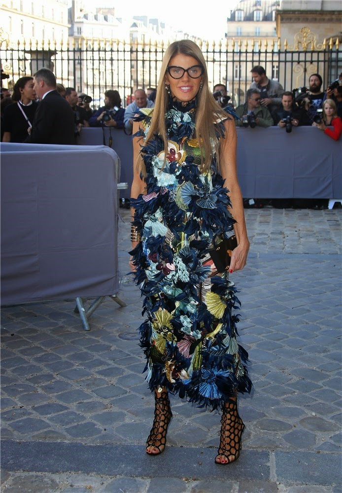 Anna Dello Russo de Dior - Paris Fashion Week 2014