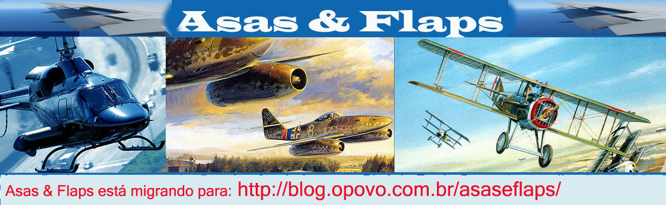 ASAS  &amp; FLAPS