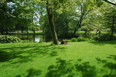 Paisaje natural muy verde junto al rio en primavera