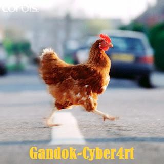 Mengapa Ayam Menyeberang Jalan?