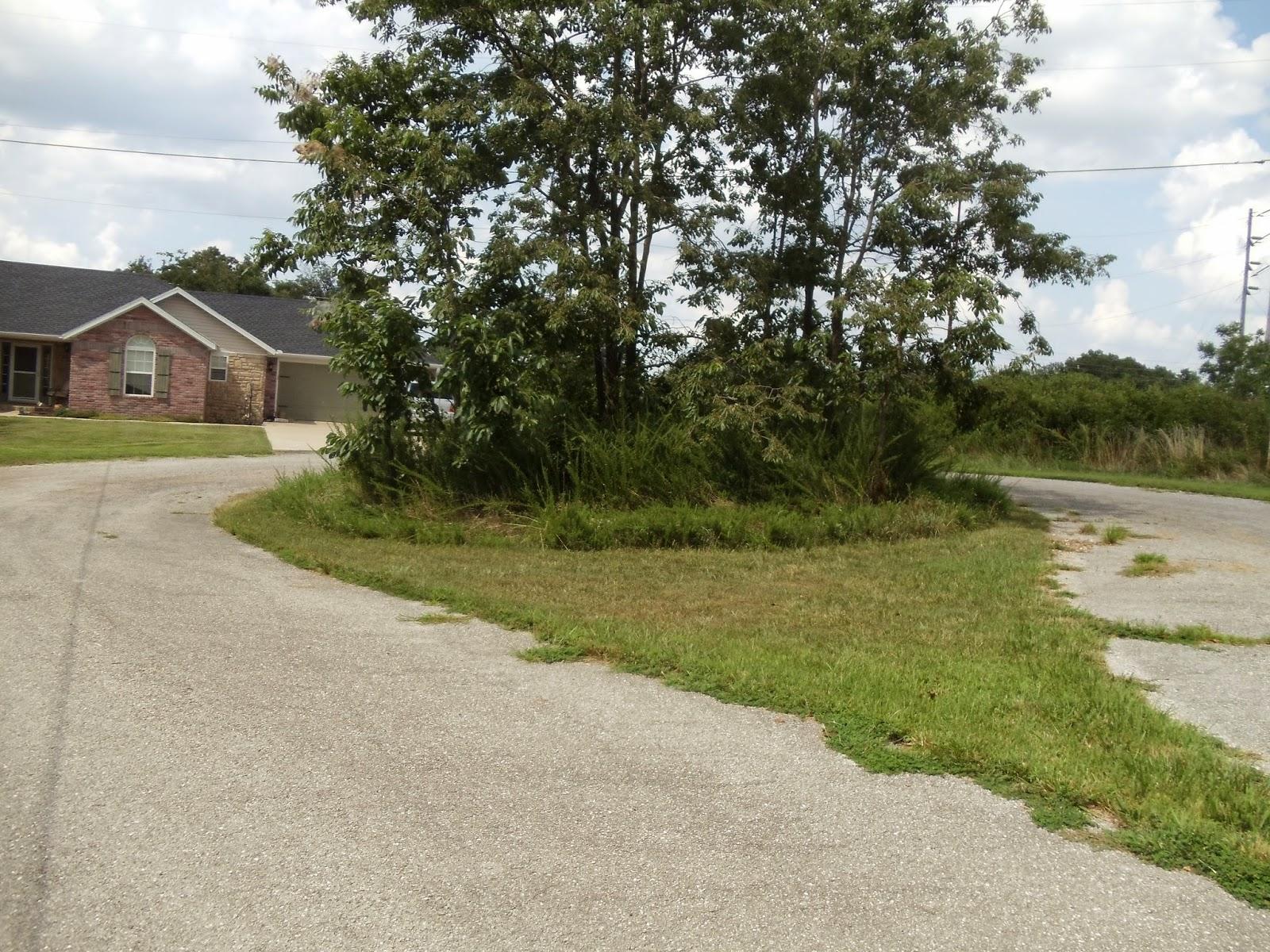 Bella Vista home Lots & land Mike Carey 479 644 4109