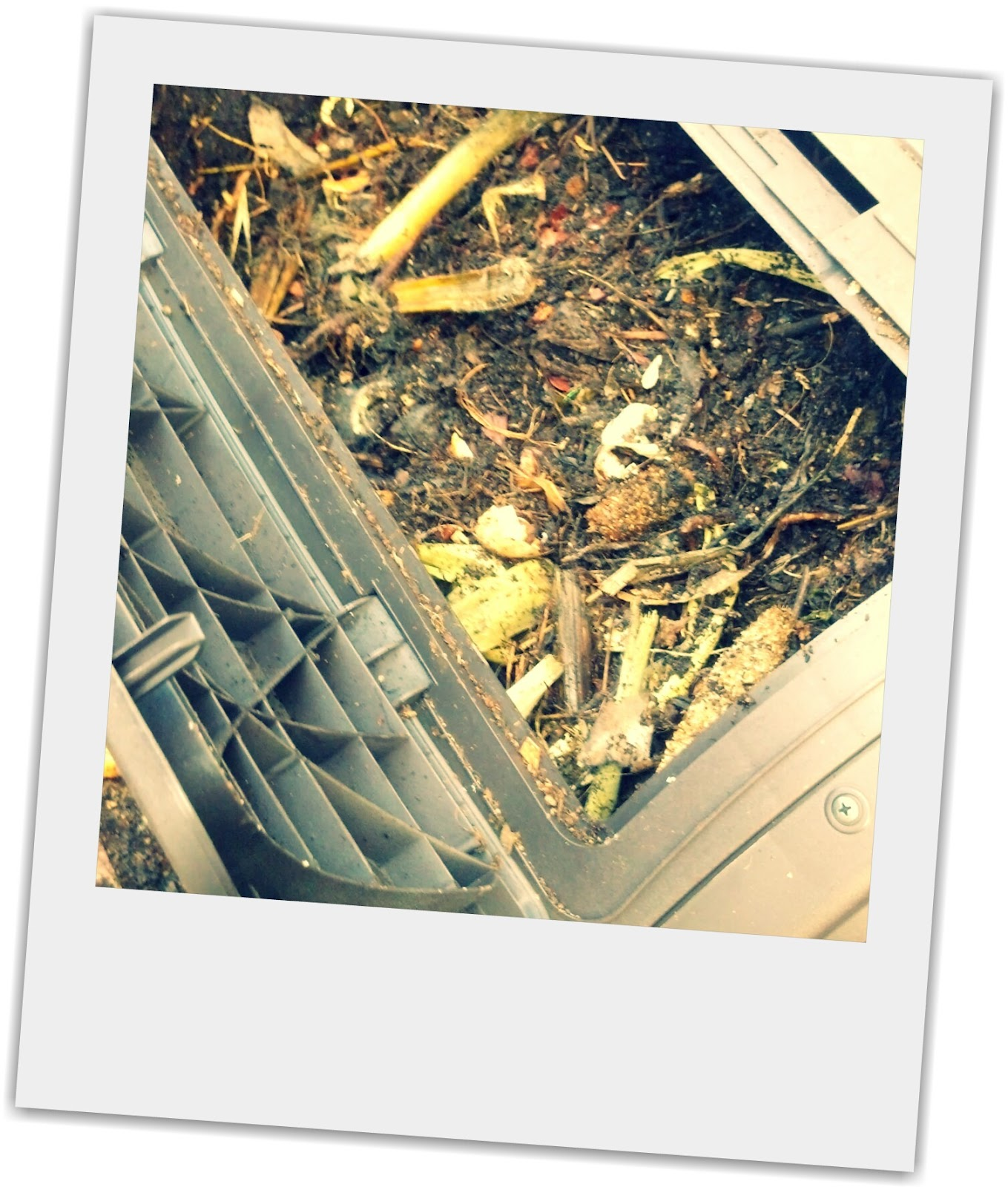 How to make compost bin for kitchen