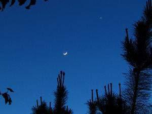 Bulan dan Venus Tampil Berbentuk Sabit