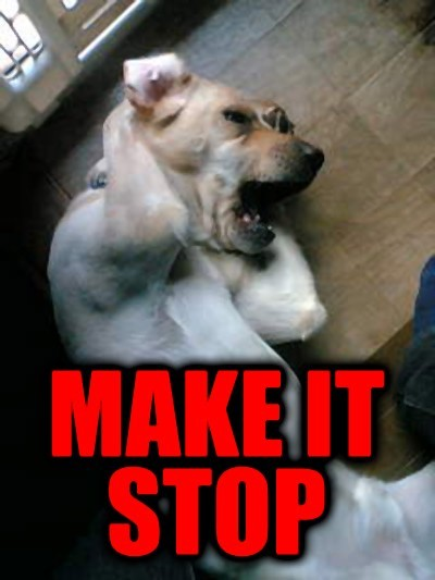 http://1.bp.blogspot.com/-g9JWbnhgt4k/TzHCmEFKMlI/AAAAAAAAApo/N1uNU1j4yOc/s1600/Make-It-Stop.jpg