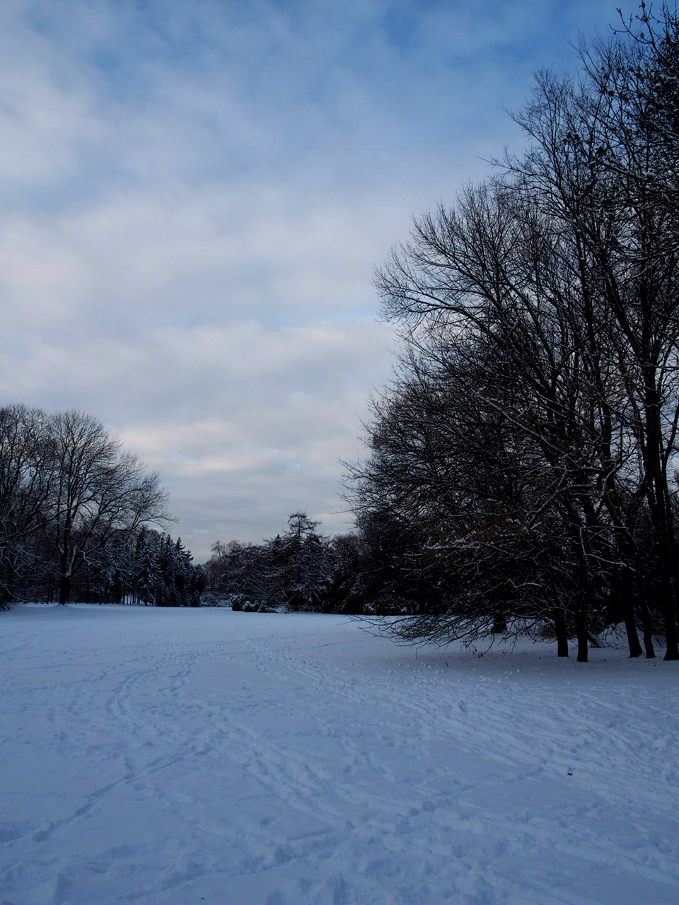 Winter Wonderland I Photos