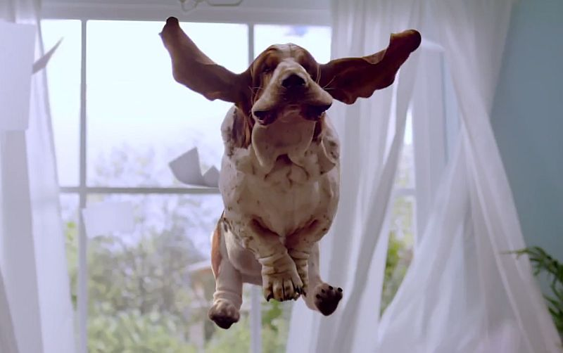 Witziges Werbevideo aus Griechenland - Wind VDSL Dog